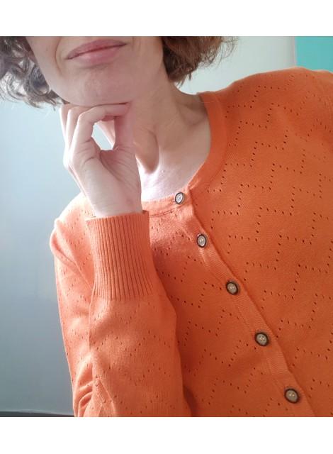 Orange kofta